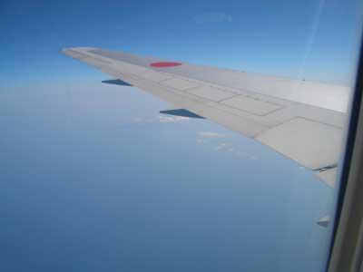 南の島より帰ってまいりました。