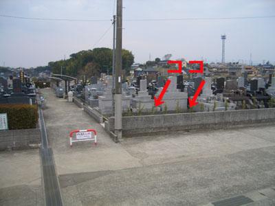 墓地の空きが出ました
