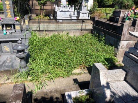 空き墓地情報!熊本市中央区国府2