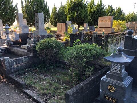 特殊な納骨室のお墓です。