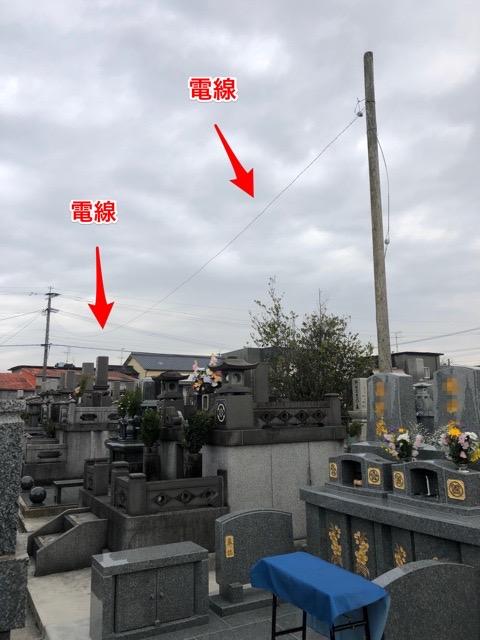 墓地に電柱あります^ ^