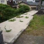 熊本市内町の真ん中に墓地