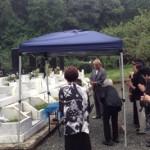 大理石のお墓