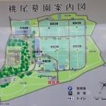 熊本市営墓地 桃尾墓園