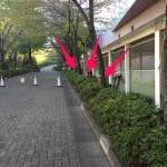 東京出張4日目